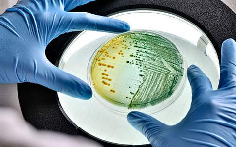 Анализ на дисбактериоз у ребенка