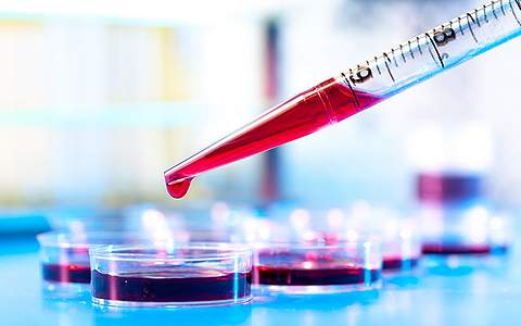 Расшифровка общего анализа крови у детей
