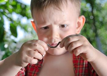 симптомы глистов у детей 2 лет