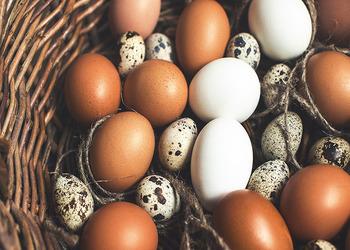 польза яичного желтка для маленького ребенка